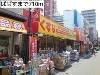 周辺環境:どらっぐぱぱす中板橋店